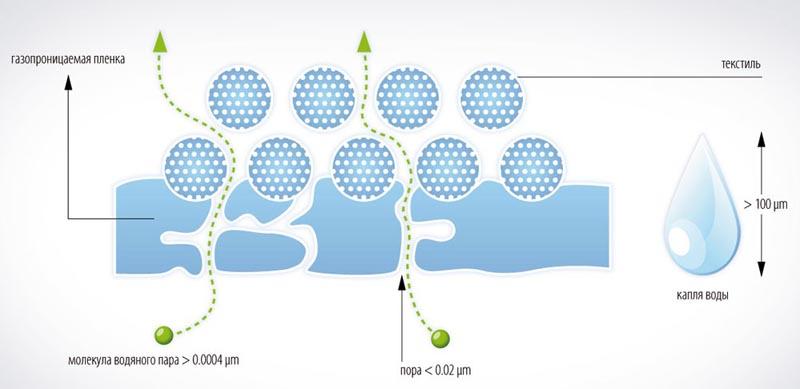 Фото: Схема прохождения влаги через пароизоляционное покрытие
